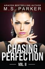chasingperfection2