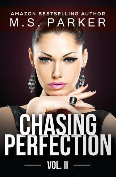 chasingperfection2