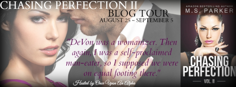 ChasingPerfection2TourBanner