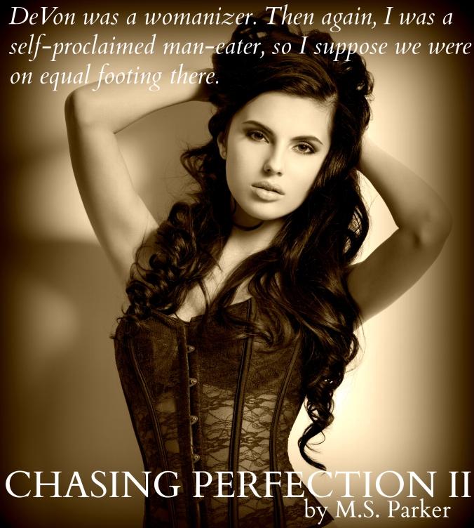 ChasingPerfectionIITease