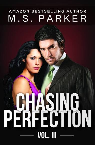 chasingperfection3cover